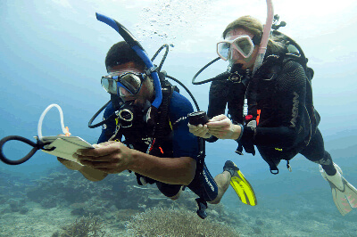 PADI Courses in Sri Lanka